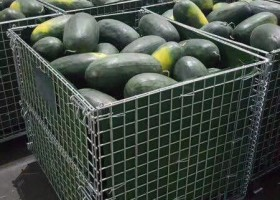 果蔬仓库笼,放果蔬的铁笼